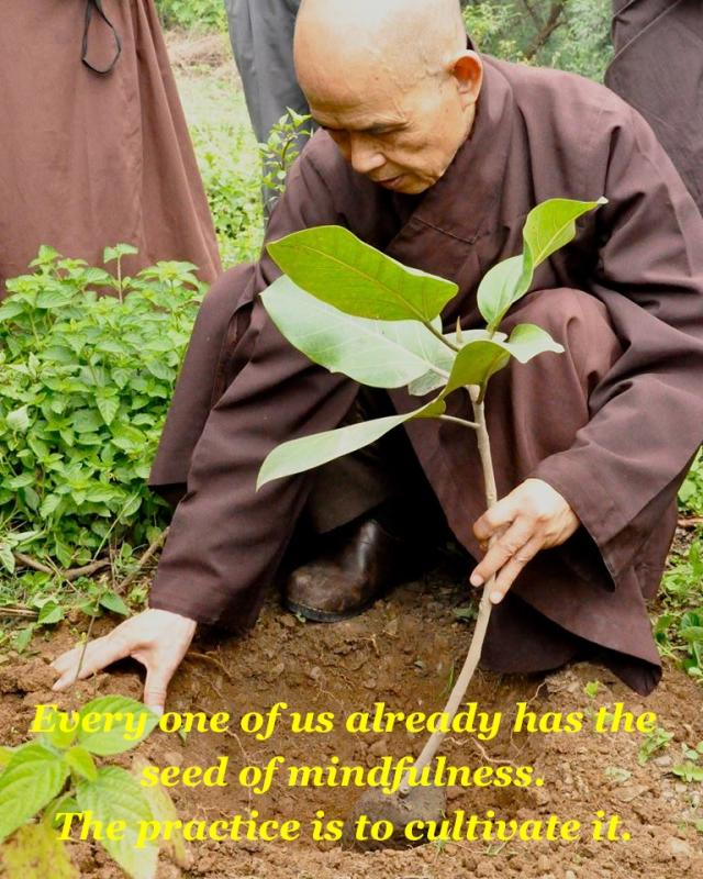 Thich Nhat Hanh Min…